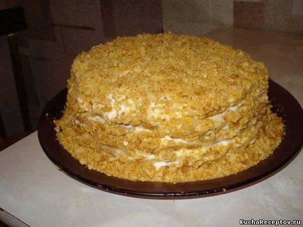 Торт наполеон в домашних условиях со сметанным кремом